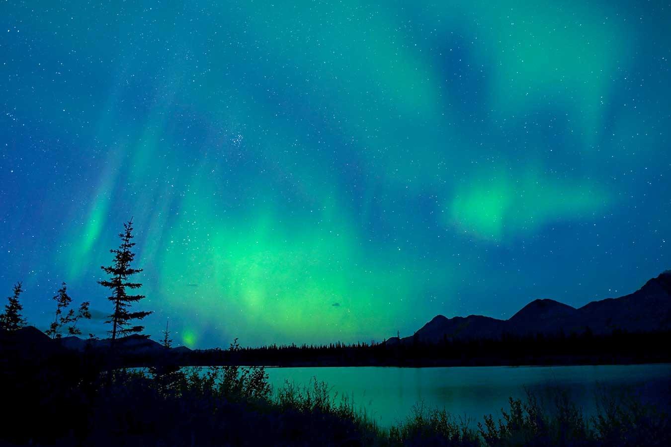 Image of the Aurora Borealis above Denali National Park