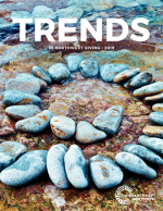 Trends 2019 report cover image_spiral of stones in water
