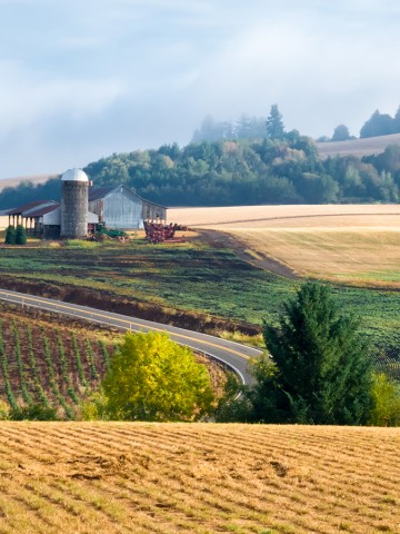 Image of a farm land and homestead in Sublimity, Oregon